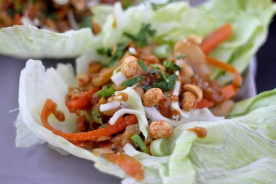 Thai Chicken Lettuce Wraps with Honey-Peanut Drizzle | Bake Your Day