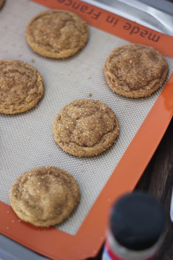 Soft & Chewy Ginger Molasses Cookies | www.bakeyourday.net