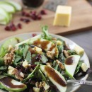 cheddar-apple-winter-salad-141